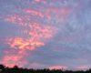 「乳房雲」と言う雲を知っていますか? 場合によっては雷雨や突風のサインにもなるそう