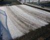 雪は積もらなくても道には危険があります。お気を付けください。
